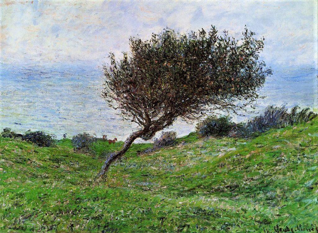 Claude Monet, 7IE-1882-84, Sur la côte à Trouville. Now: CR687, 1881, On the Coast at Trouville, 60x81, MFA Boston (iR2;iR51;R22,no687;R90II,p206+223;R2,p395;M22)