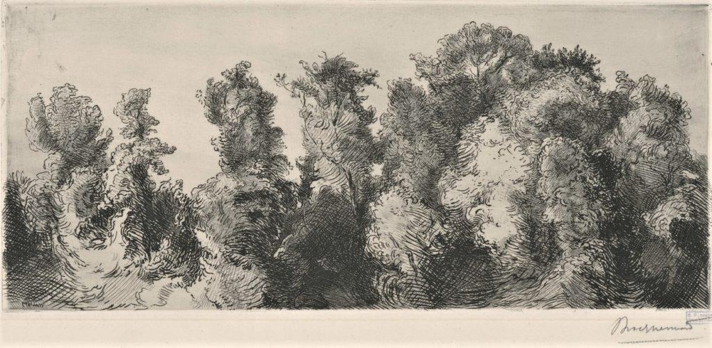 Félix Bracquemond, 1IE-1874-26-2, Les arbres de la manufacture à Sèvres. Probably: 1873, B209, Étude de paysage (Study of a landscape), etch, 14x32, BNF Paris (iR10;R73,p46;R2,p119;R90II,p18)