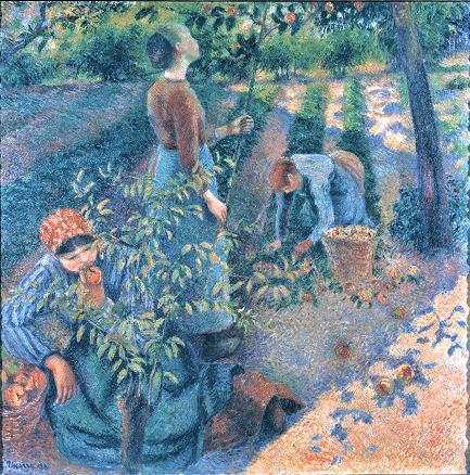 Camille Pissarro, 8IE-1886-100, La cueillette de pommes. Now: 1881-6, CCP824, Apple Picking, 125x125, OMA Kurashiki