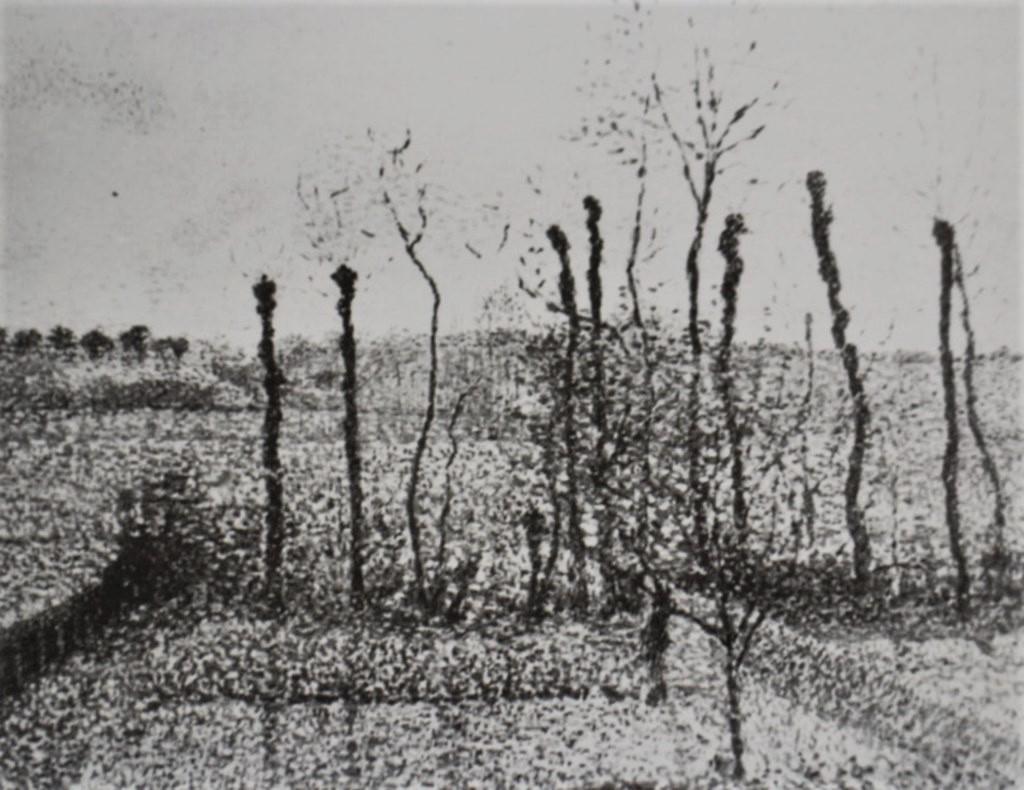 Camille Pissarro, 8IE-1886-97, Coteaux de Bazincourt, l'après-midi. Now: 1886, CCP821, View of the Hills at Bazincourt, afternoon, 54x65, private