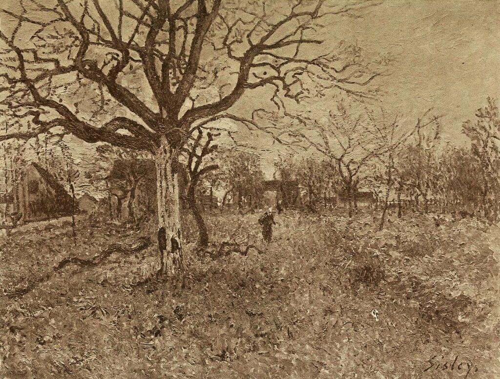 Alfred Sisley, 7IE=1882-175, Un noyer à Veneux =1881ca, CR432, Noyer à Veneux-Nadon, 50x65, private