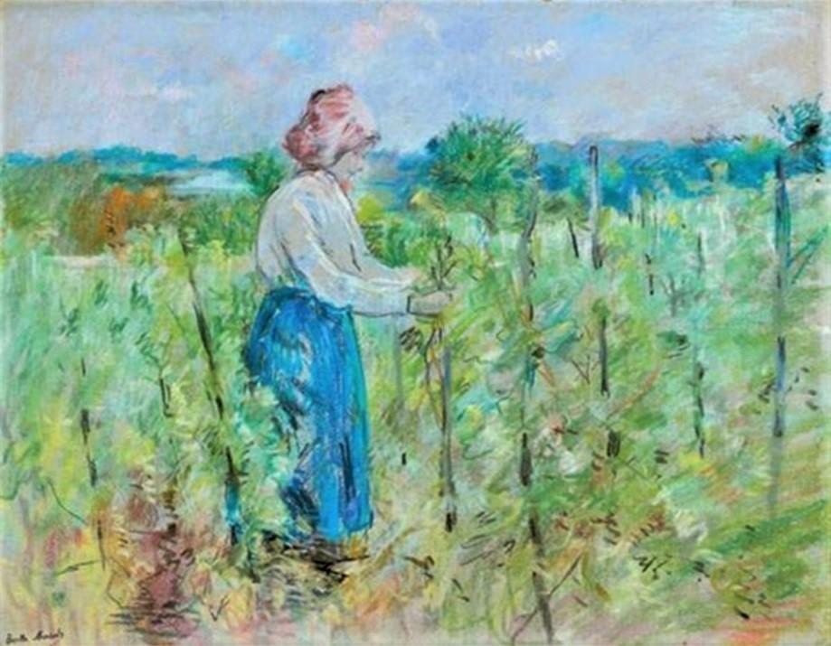 Berthe Morisot, 7IE-1882-99, Paysage au pastel. Maybe(??): 1882, CR464, Dans les vignes, pastel, 40x50, A2008/06/25