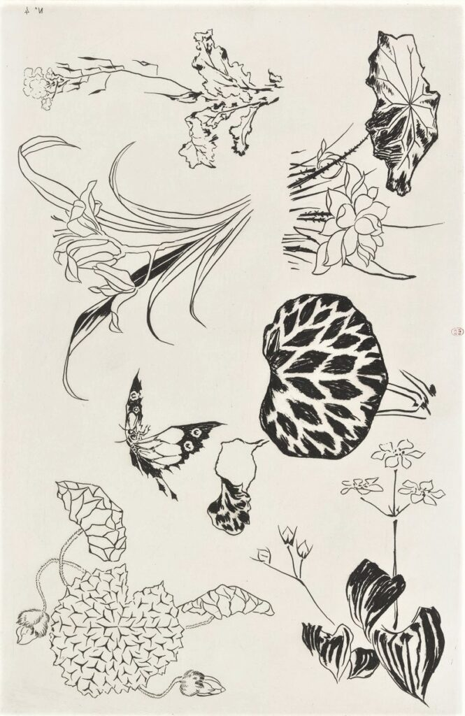 Félix Bracquemond, 5IE-1880-5, Eaux-fortes pour décoration... Probably: 1866, B533, Rousseau no.4, Water plants, butterfly, etch, 27x42, BNF Paris (iR40;R73,p13)