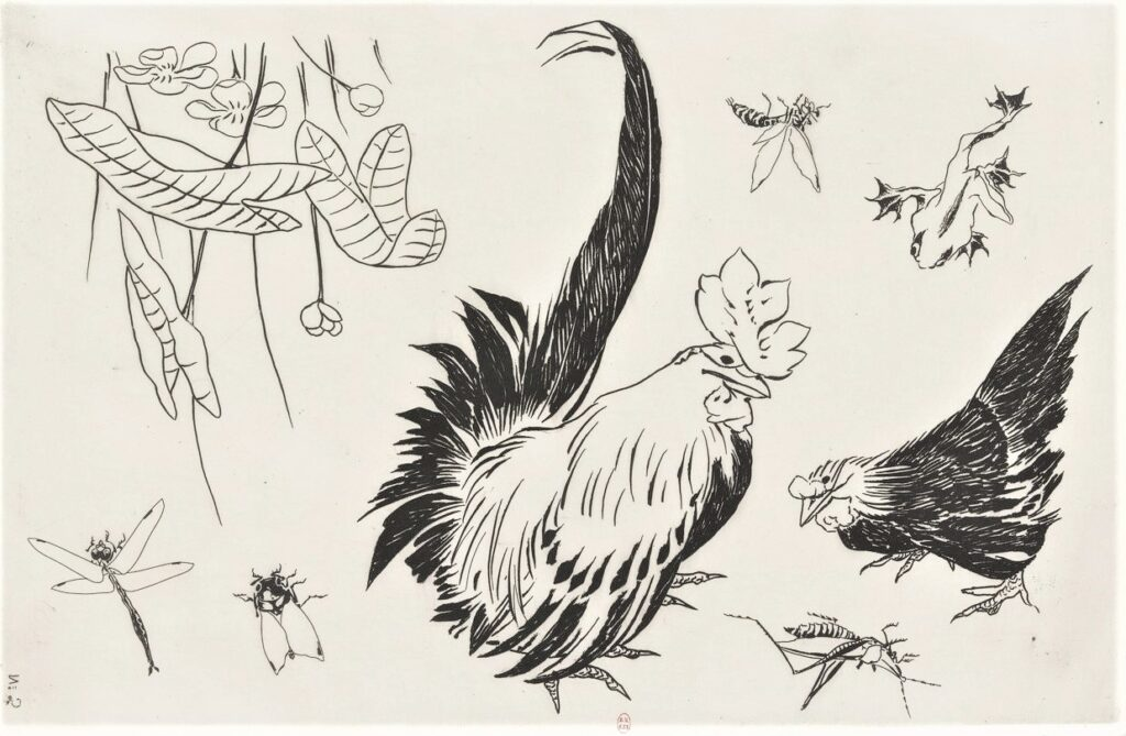 Félix Bracquemond, 5IE-1880-5, Eaux-fortes pour décoration... Probably: 1866, B534, Rousseau no.5 (or 2), Large rooster, hen, insects, lizard, plants, etch, 27x43, BNF Paris (iR40)