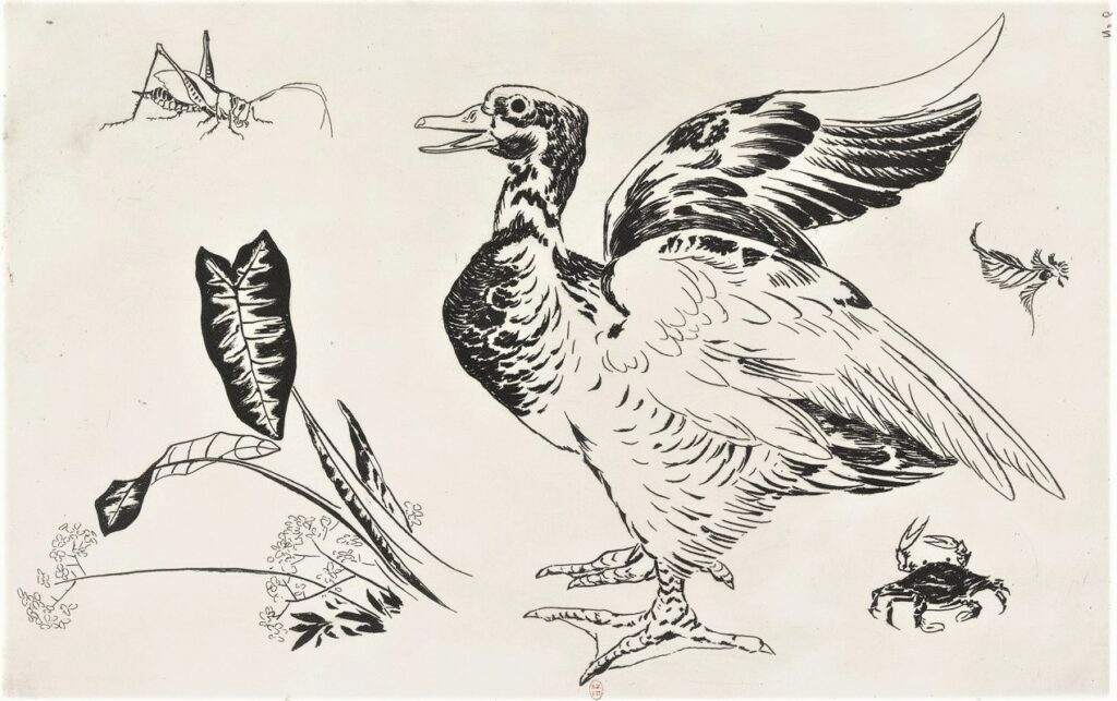 Félix Bracquemond, 5IE-1880-5, Eaux-fortes pour décoration... Probably: 1866, B535, Rousseau no.6, Large duck, cricket, crab, plants, etch, 27x42, BNF Paris (iR40)