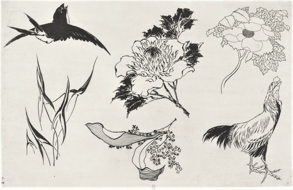 Félix Bracquemond, 5IE-1880-5, Eaux-fortes pour décoration... Probably: 1866, B537, Rousseau no.8, Swallow, rooster, flowers, etch, 28x42, BNF Paris (iR40)