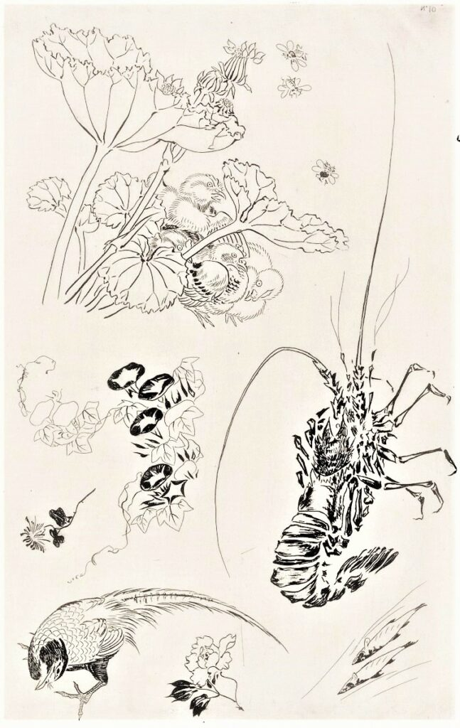 Félix Bracquemond, 5IE-1880-5, Eaux-fortes pour décoration... Probably: 1866, B539, Rousseau no.10, Lobster, plants, birds and fishes, etch, 43x28, BNF Paris (iR40)