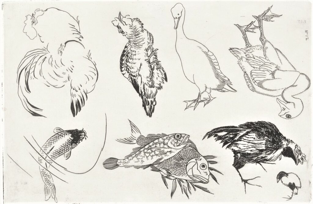 Félix Bracquemond, 5IE-1880-5, Eaux-fortes pour décoration... Probably: 1866, B541, Rousseau no.12, Ducks, cocks, fish, etch, 28x43, BNF Paris (iR40;R73,p13)