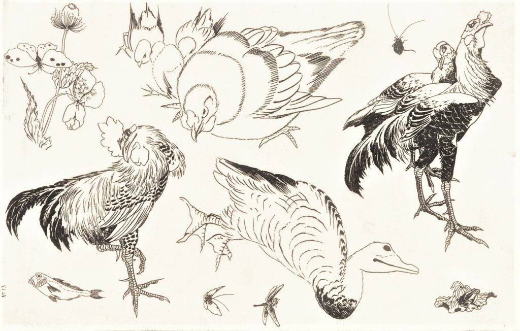 Félix Bracquemond, 5IE-1880-5, Eaux-fortes pour décoration... Probably: 1866, B542, Rousseau no.13, Roosters, ducks, poison, dragonfly, cricket, butterfly, flowers, etch, 27x42, BNF Paris (iR40)