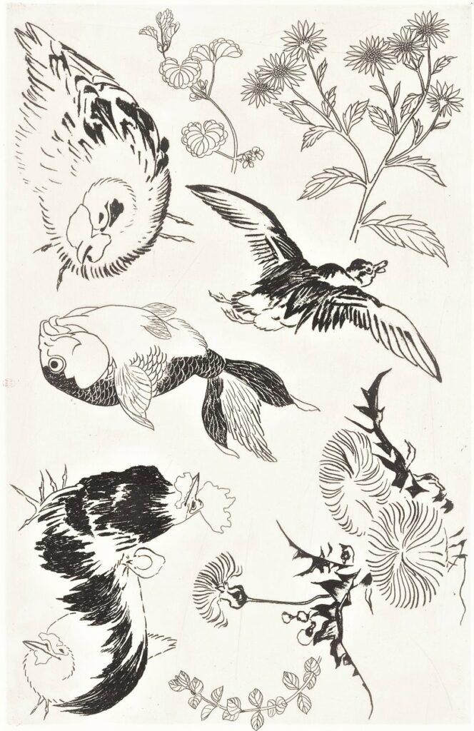 Félix Bracquemond, 5IE-1880-5, Eaux-fortes pour décoration... Probably: 1866, B543, Rousseau no.14, Rooster, duck, fish, plant, etch, 26x43, BNF Paris (iR40)