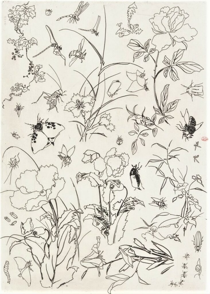 Félix Bracquemond, 5IE-1880-5, Eaux-fortes pour décoration... Probably: 1866, B544, Rousseau no.15 (or 22), flowers and insects, etch, 25x35, BNF Paris (iR40)