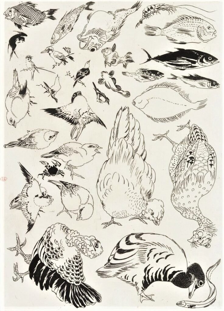 Félix Bracquemond, 5IE-1880-5, Eaux-fortes pour décoration... Probably: 1866, B546, Rousseau no.17, Guinea fowl, turkey, duck, passerines, fishes, etch, 25x35, Cleveland MA (iR6;iR40)