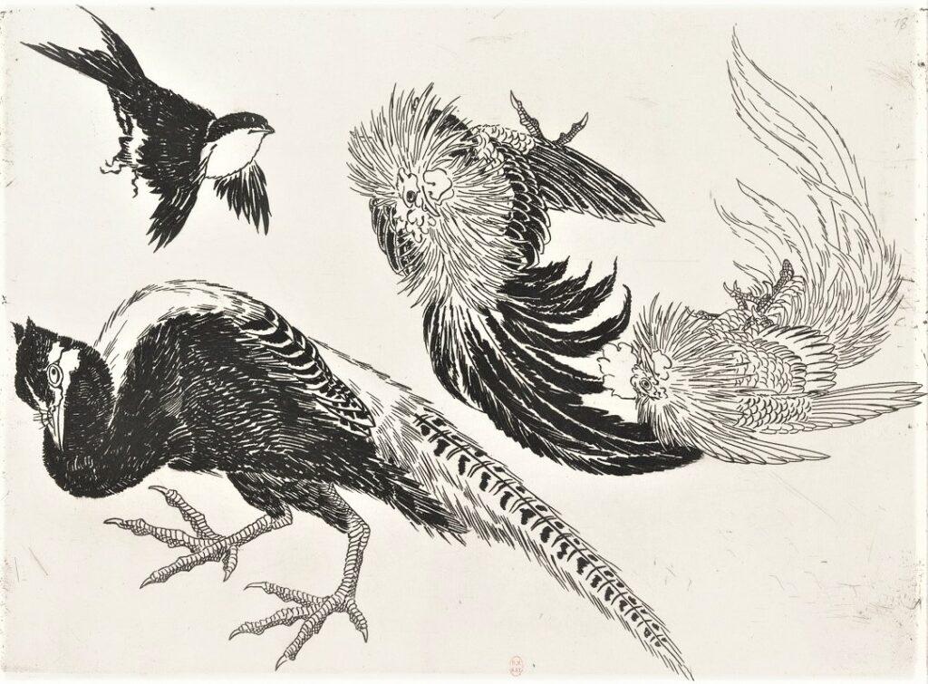 Félix Bracquemond, 5IE-1880-5, Eaux-fortes pour décoration... Probably: 1866, B547, Rousseau no.18, Pheasant, cock, sparrow, etch, 25x34, BNF Paris (iR40)