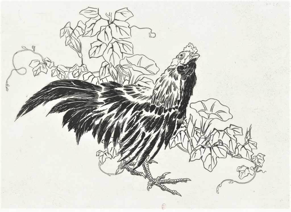 Félix Bracquemond, 5IE-1880-5, Eaux-fortes pour décoration... Probably: 1866, B554, Rousseau no.25, Rooster, bindweed, etch, 25x34, BNF Paris (iR40)