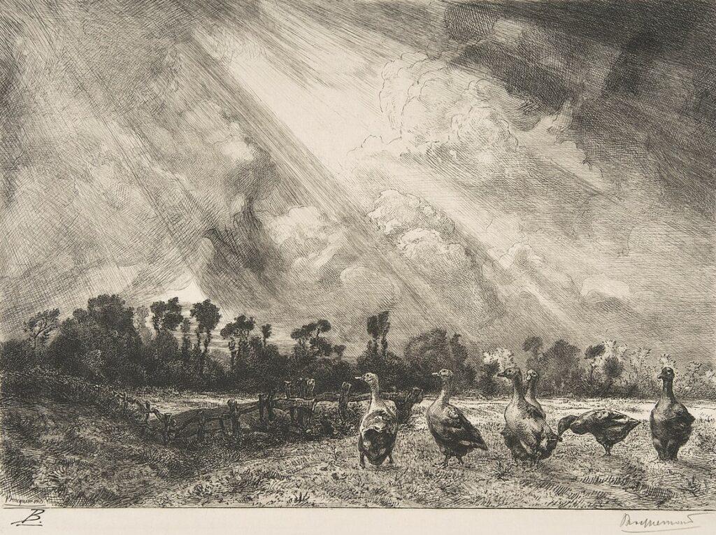 Félix Bracquemond, 1882-84, B219, The Storm Cloud, etch, xx, Metropolitan (iR6;R85,no219)