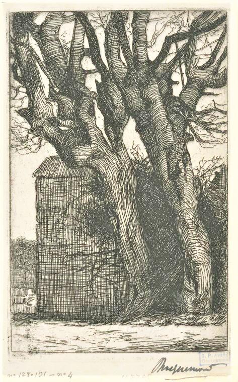 Félix Bracquemond, 1IE-1874-26-3, Les Charmes. Maybe??: 1853, B131, Deux gros troncs de charme devant un mur, etch, 34x45, NYPL (iR61;iR10;iR6;R85,no131;R52,p50)