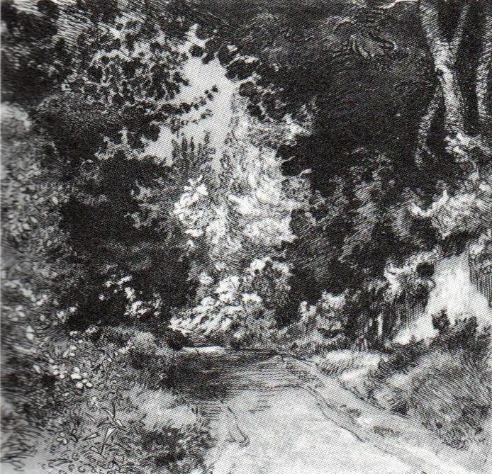 Félix Bracquemond, 1IE-1874-27-1, Le Chemin du parc = 18xx, B208, The road in the parc, etch, 22x23, BNF Paris (R90II,p19+5;R85,no208;R2,p119)