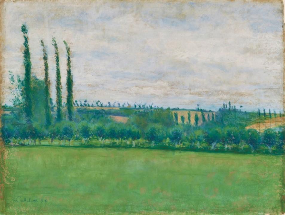 Gustave Caillebotte, 4IE-1879-31, Prairie, pastel =1878, CR101, Prairie, Yerres, pastel, 47x61, AM Tokyo (Mx;iR10;R90II,p107+125;R101,no101;R102,no127+p283)