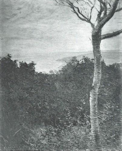 Gustave Caillebotte, 7IE-1882-13, Bois près de la mer =1880, CR154+172/166, Wood near the sea, 65x55, unknown (aR8;R101,no154+172;R102,no166+p283;R2,p394;R90II,p202)